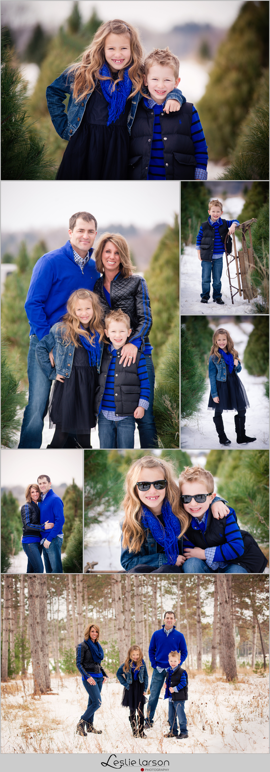 hansen tree farm christmas leslie larson photography