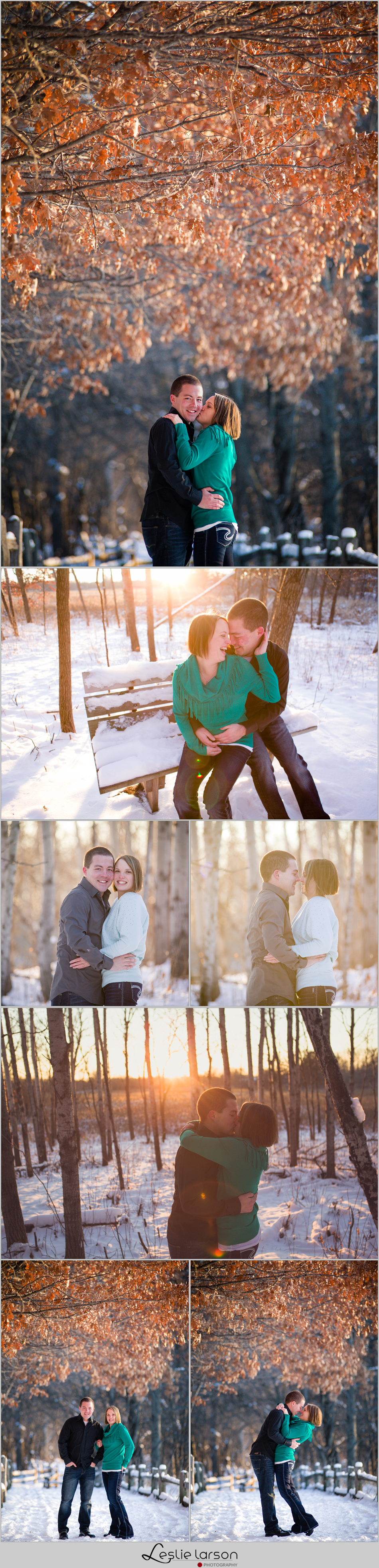 winter springbrook nature center engagement leslie larson photography